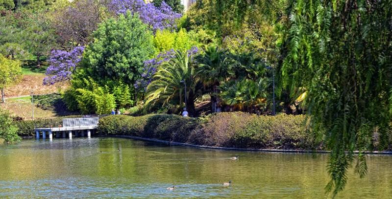 parque paloma marbesol