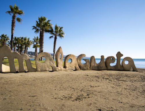 Las 10 mejores cosas que hacer en Málaga 🧐