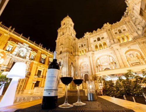 Restaurantes con vistas en Málaga
